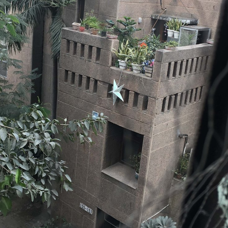 Lived modernism (Zakir Bagh Apartments, Delhi).