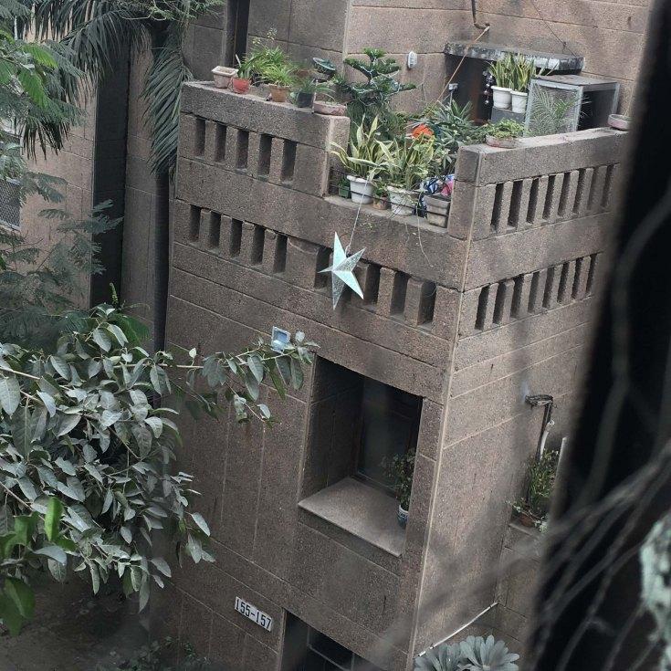 Lived modernism (Zakir Bagh Apartments, Delhi).