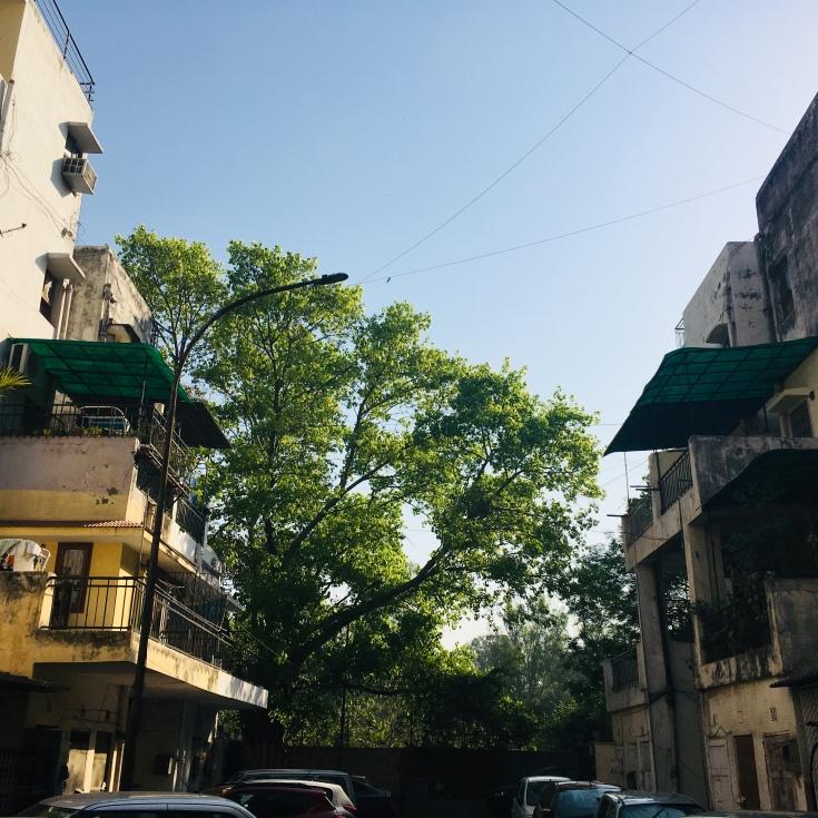 Weathered modernism (Sukhdev Vihar DDA colony, Delhi).
