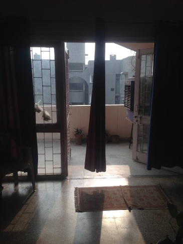 Looking out, looking in (Deluxe Apartments, Delhi).